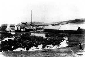 A View of the Laie Sugar Mill Photo courtesy of the Joseph F. Smith Library Archives and Special Collections, BYU Hawaii