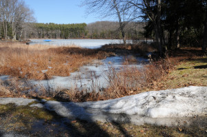 Pickerel Pond at the Joseph Knight farm site. Photo by Kenneth Mays.