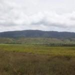 The Palawai Basin Photo courtesy Fred Woods