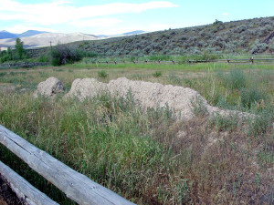 Remaining section of an original wall of Fort Lemhi. Photo by Kenneth Mays.