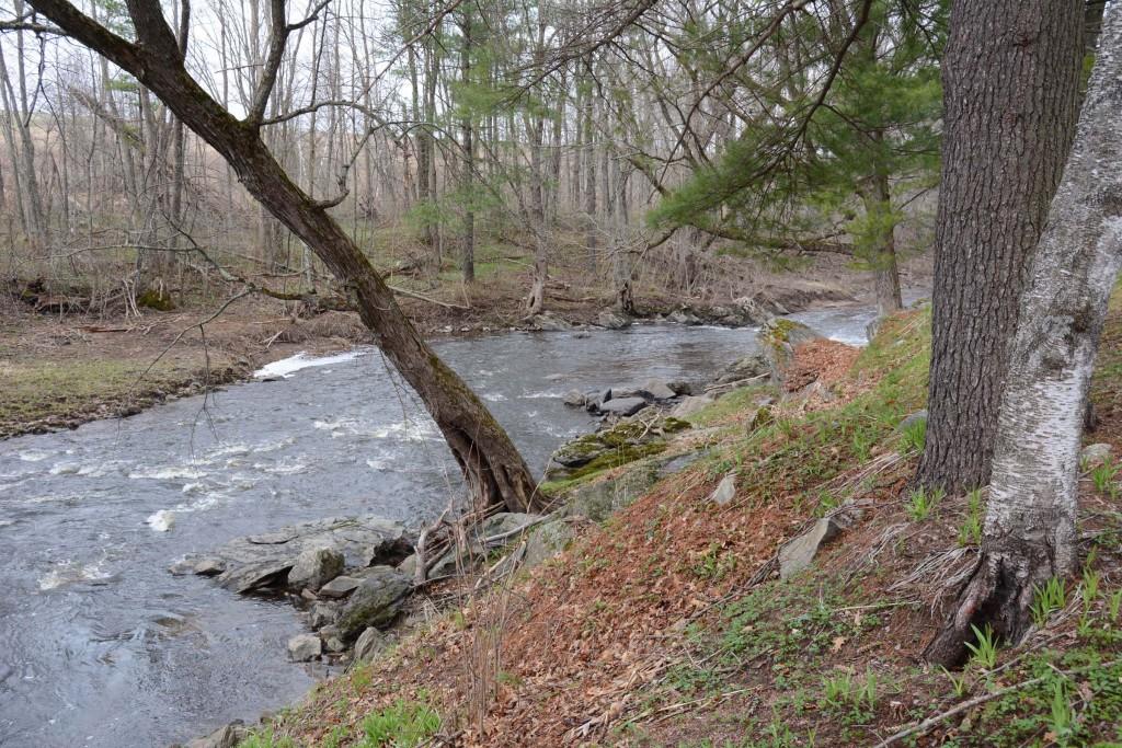 Cunningham Creek at Neillsville, Wisconsin.
