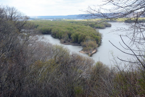 The Mississippi River below its confluence with the Black River showing the route of the log rafts floating to Nauvoo.