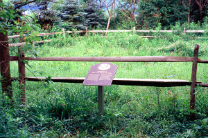 ome site of Isaac and Elizabeth Hale, Harmony, PA. Photo (1999) by Kenneth Mays.