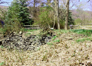 ome site of Isaac and Elizabeth Hale, Harmony, PA. Photo by Kenneth Mays.
