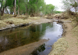 San Pedro River just north of the U.S. border with Mexico. Photo by Kenneth Mays.