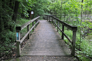 Boardwalk at the Stannard stone quarry. Photo by Kenneth Mays.
