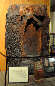 The names of the murdered scouts were carved into this tree trunk. Photo (2010) by Kenneth Mays.