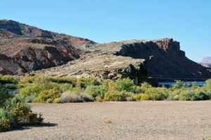 The Colorado River at the site of Lee's Ferry. Photo by Kenneth Mays.