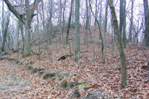 "Naples-Russell Mound # 8, Pike County, IL or the ""Zelph Mound."" Photo by Kenneth Mays."